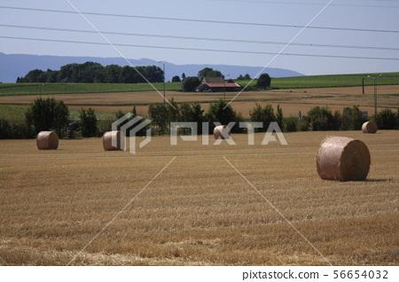 European village 56654032