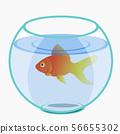 Cute, funny, beautiful pet shop 56655302