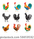 Roosters and rooster silhouettes set 56659592