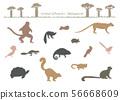 동물 실루엣 : 마다가스카르 56668609