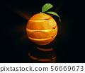 3d Illustration of Orange fruit with orange leaves 56669673