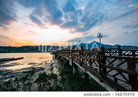 臺北關渡黃昏 Taipei, Taiwan, Guandu, evening landscape 56670459