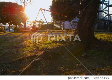 Park swings 56672355