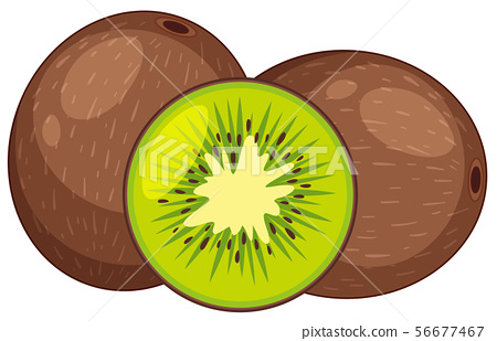 Two fresh kiwi fruits in whole and one cut in half 56677467