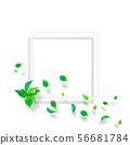 신록 - 잎 - 흰색 프레임 -png- 투과 56681784