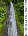 [돗토리 현 돗토리시] 雨滝 (일본의 폭포 백선) 56684460