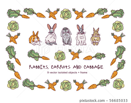 Rabbits carrots cabbage and border isolate objects 56685033