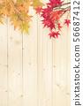 가을 이미지 배경 소재 배경 낙엽 우드 56687412