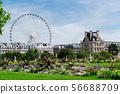 Tuileries garden, Paris 56688709