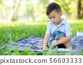 Young little asian boy reading and writing book 56693333