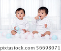 cheerful twin babies playing color ball on  bed 56698071
