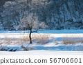 Hiyama Kogen Winter Frost 56706601