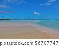 타히티의 아름다운 바다 56707747