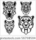 獵豹 動物 ICON 56708504