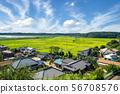 Rural landscape 56708576
