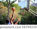 Sport 56709339