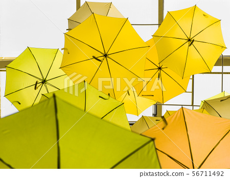 open yellow umbrellas used as decoration 56711492