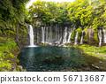 시즈오카 시라 이토 시즈오카 현의 파워 스포트 일본의 폭포 백선 56713687