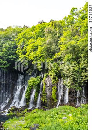 Shizuoka Shiraito Falls,Shizuoka Prefecture Power Spot 56713688