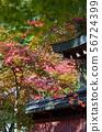 교토에있는 칸고 사원 주변의 풍경. 56724399