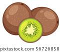 Fresh kiwi fruit on white background 56726858