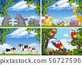 Set of various animals in nature scenes 56727596