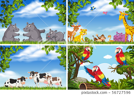 Set of various animals in nature scenes 56727596