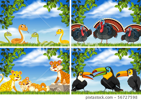 Set of various animals in nature scenes 56727598