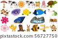 Set of flowers and animals 56727750