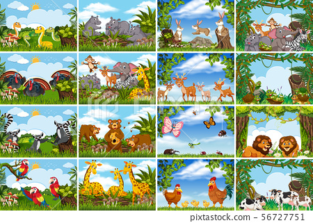 Set of various animals in nature scenes 56727751