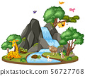 Background scene of wildlife by the waterfall 56727768