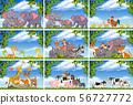 Set of various animals in nature scenes 56727772