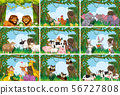 Set of various animals in nature scenes 56727808