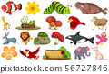 Set of many kinds of animals 56727846