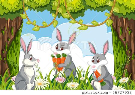 Cute rabbits in jungle scene 56727958