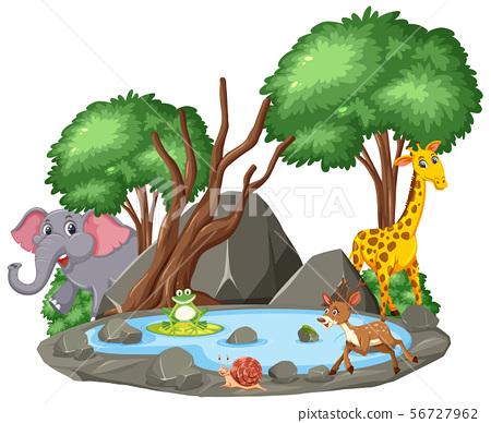 Background scene of wild animals and pond 56727962