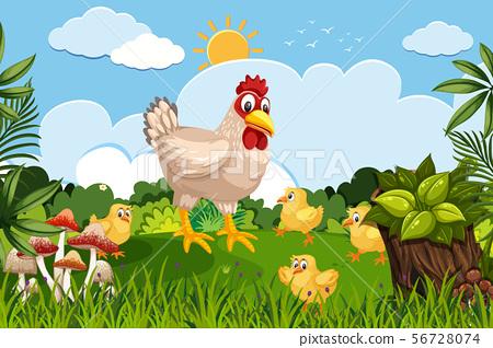 Chickens in nature scene 56728074