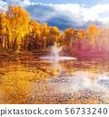 Autumn season 56733240