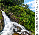 Datanla Waterfalls in Da Lat, Vietnam 56737074