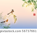 Bamboo trees and two magpies birds. Traditional oriental ink painting sumi-e, u-sin, go-hua 56737661