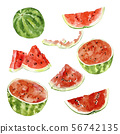Watercolor illustration. Watermelon, half a watermelon, a piece of watermelon, a slice of watermelon 56742135