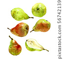 Set with watercolor pears green and red 56742139