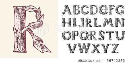 Antique wood Font for forest posters. Decorative ancient alphabet. Vintage typeface. Double exposure 56742886