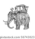 Set India culture. Elephant and temple, a woman in national dress and the inscription double 56743023