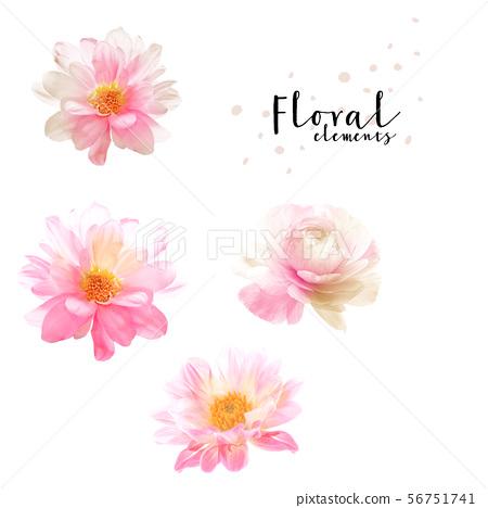 優雅的水彩花卉和海報圖案設計 56751741