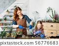 diy florarium home gardening planting succulents 56776683