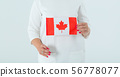 Close up of the flag of Canada in female hands. 56778077