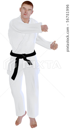Karate house 56781996