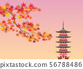 단풍과 오층탑 56788486