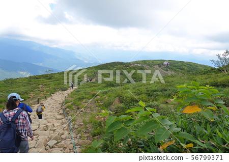 Happo-One Nature Research Road Hakuba Village 56799371